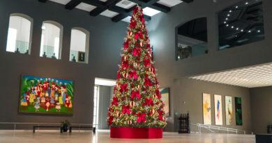 Palácio dos Bandeirantes inaugura árvore e programação especial de Natal