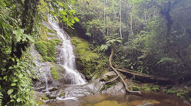 Em Itanhaém, área do Parque Estadual da Serra do Mar terá maior controle de acesso