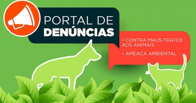 Portal da Prefeitura de Itanhaém ajuda a denunciar maus-tratos contra animais e ameaça ambiental